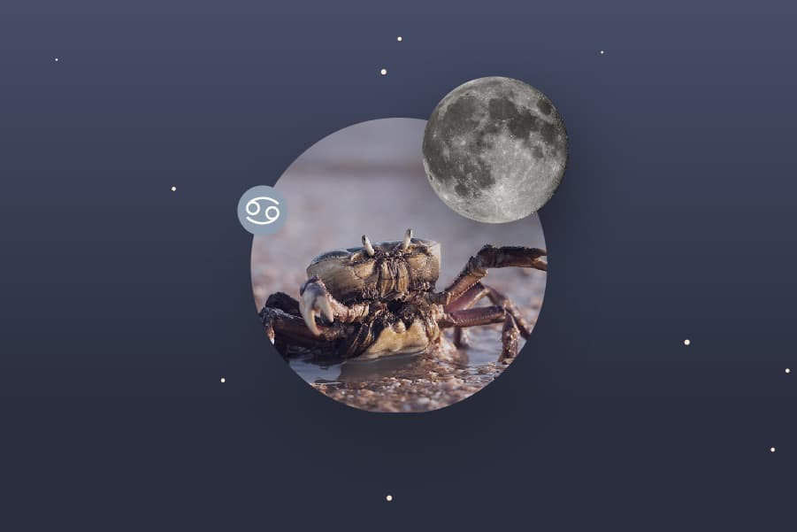 The Cancer Moon - Cancer Moon Sign and Moon in Cancer