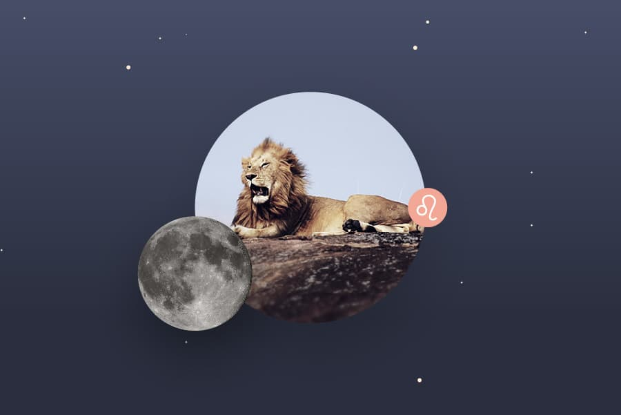 The Leo Moon - Leo Moon Sign and Moon in Leo Transit