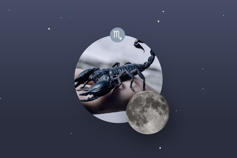 The Scorpio Moon - Scorpio Moon Sign and Moon in Scorpio Transit