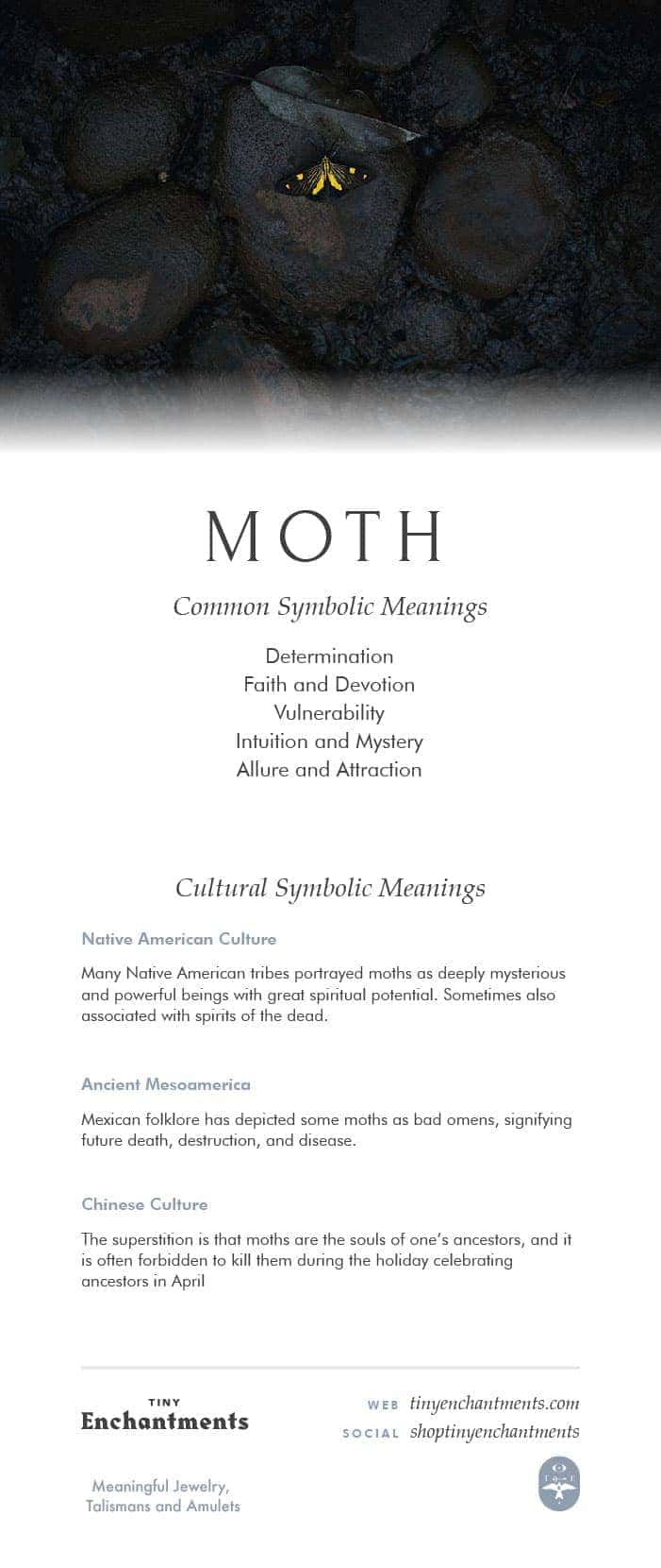 Moth Symbolism - Moth Dream Meaning, Moth Mythology and Moth Spirit Animal Meanings Full Infographic
