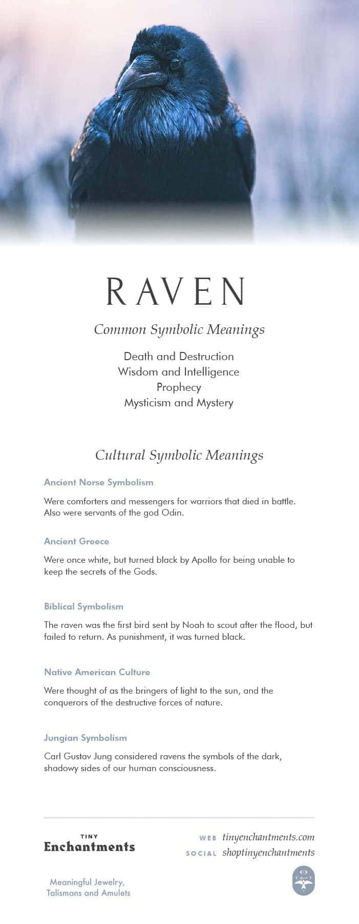 Raven Symbolism Raven Dream Meaning Raven Mythology And Raven
