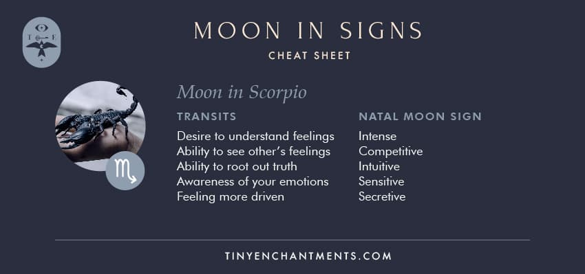 Moon in Scorpio / Scorpio Moon Sign Meaning Personality