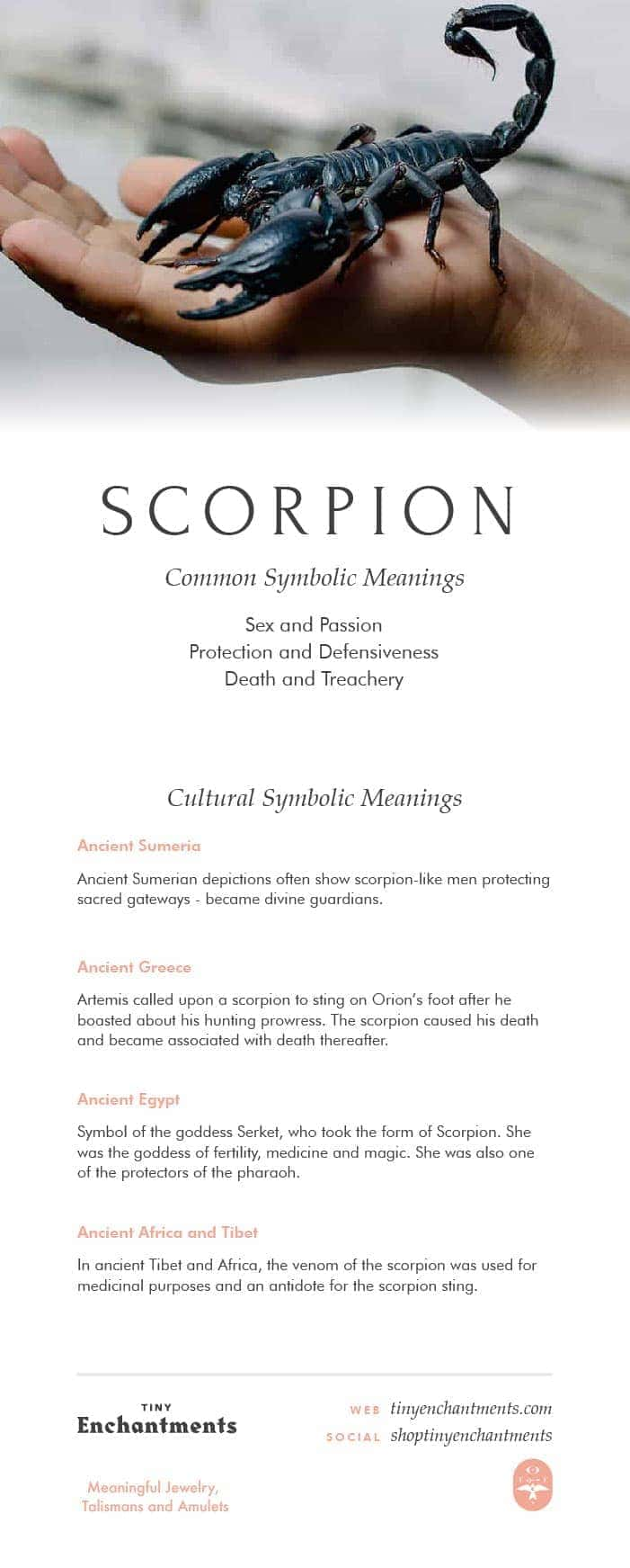 Scorpion Symbolism Scorpion Dream Meaning Scorpion Mythology And