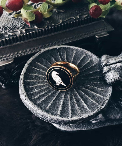 Raven Ring - Gold Coin Ring, Enamel Ring, Animal Spirit Ring, Black and White Animal Ring - On ritual altar - occult ring