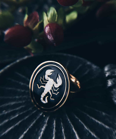 Scorpion Ring - Gold Coin Ring, Enamel Ring, Animal Spirit Ring, Black and White Animal Ring - On ritual altar - occult ring