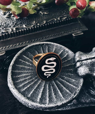 Snake Ring - Gold Coin Ring, Enamel Ring, Animal Spirit Ring, Black and White Animal Ring - On ritual altar - occult ring