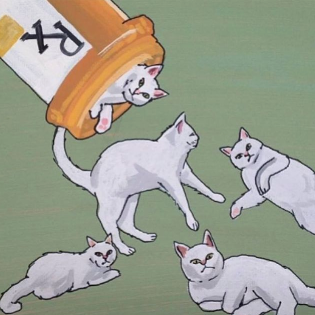 Feline Health Supplement