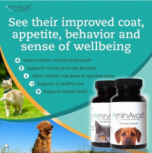 AminAvast - Kidney Support Supplement