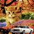 """Autumn"" - Cats and Cars (print)"