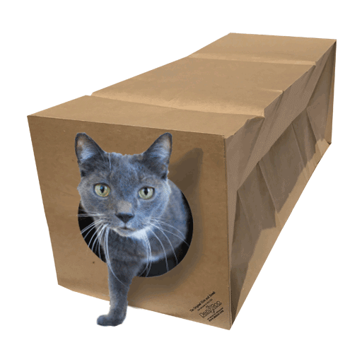 """Hide and Sneak"" Cat Tunnel"