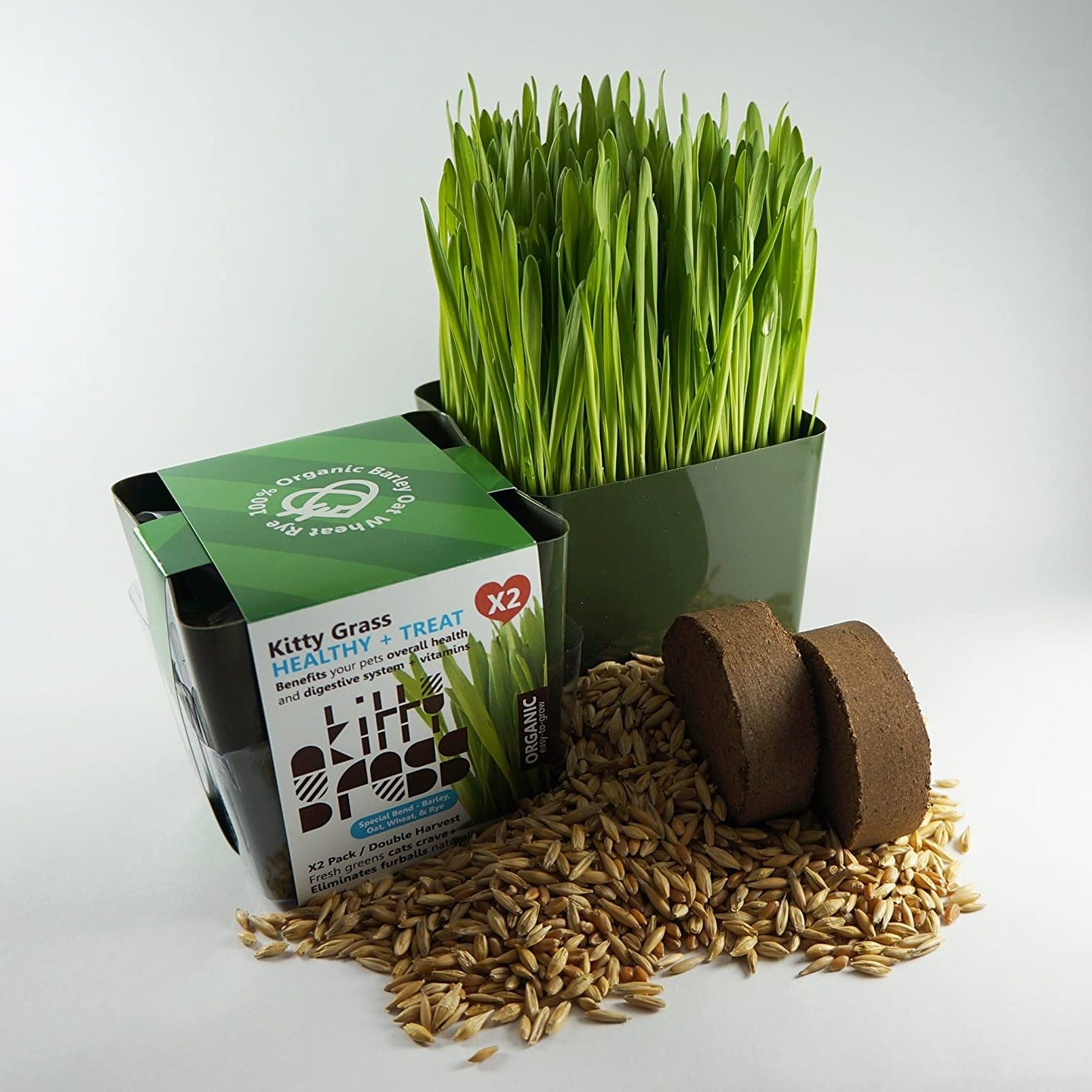"""Grow Your Own Kitty Grass"" - Cat Treat"
