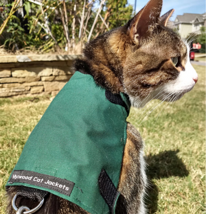 """Mynwood Walking Jacket"" - Cat Harness"
