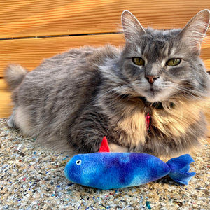 """One-Eyed Catfish"" - Catnip Toy"