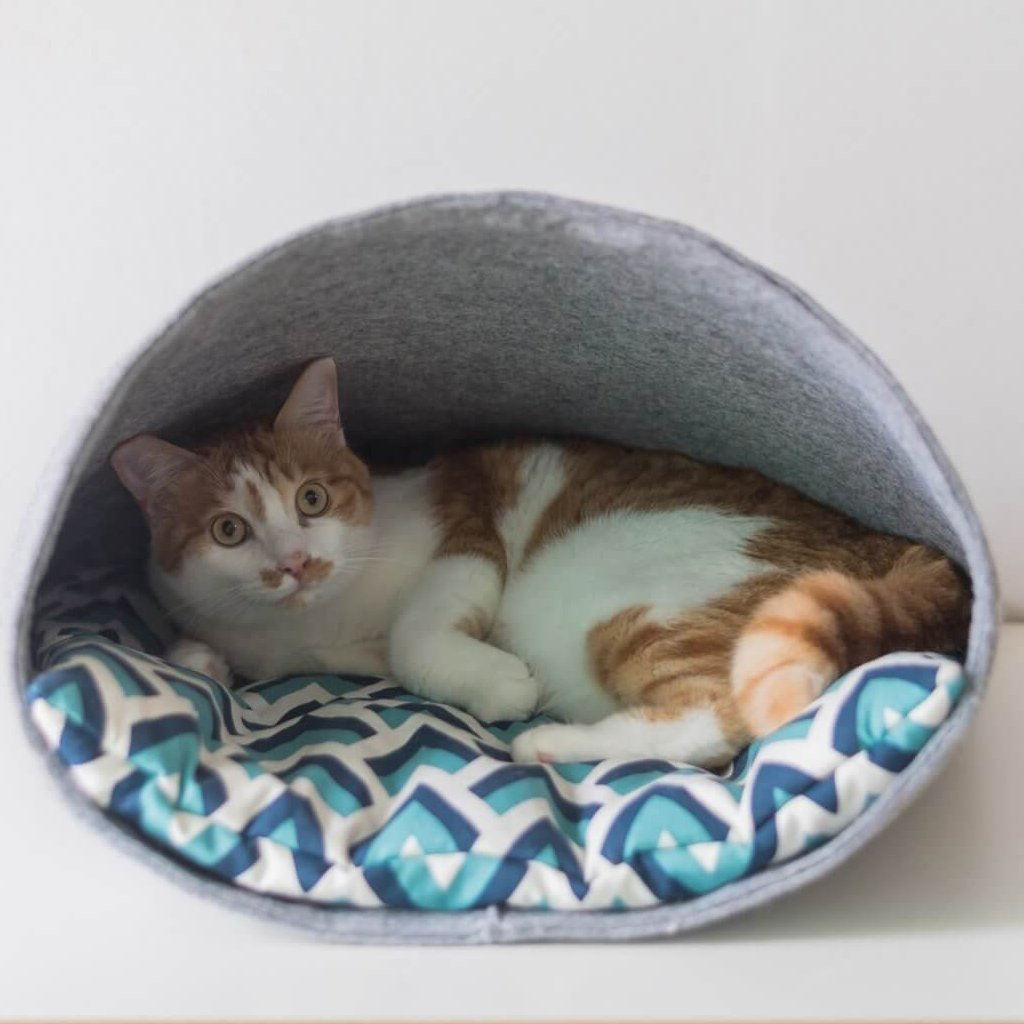 """Pet Pocket"" - Cat Bed"