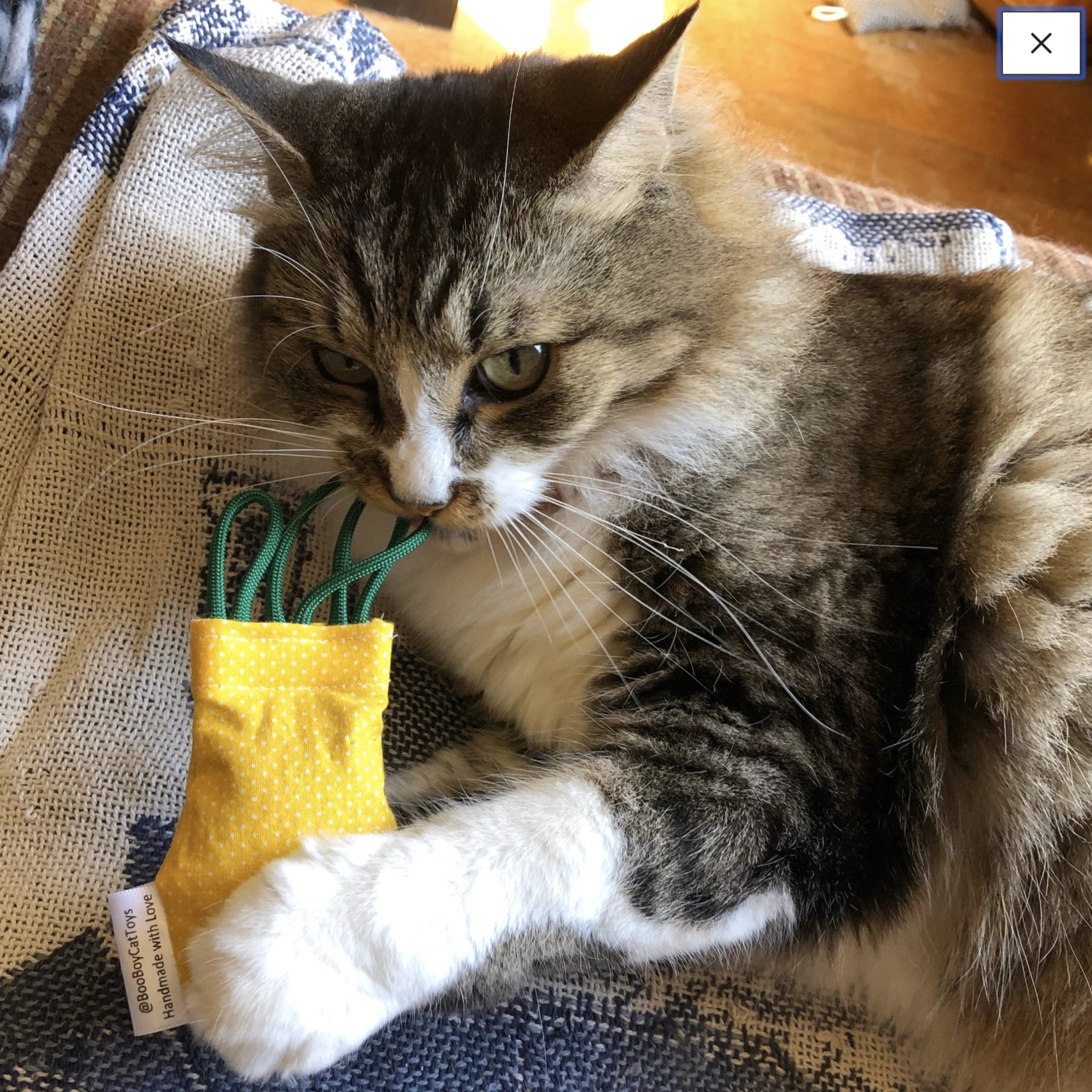 """Refillable Catnip Pineapple"" - Cat Toy"