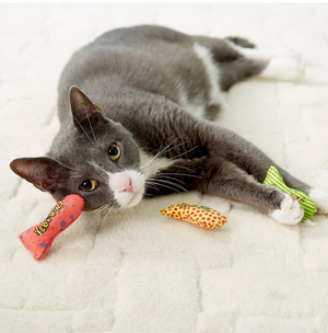 """Stinkies"" Catnip Sardines - Cat Toy"