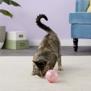 """SlimCat"" - Puzzle Feeder + Treat Ball"