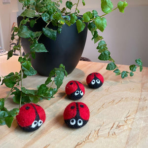"""Gina The Ladybug"" - Cat Toy"