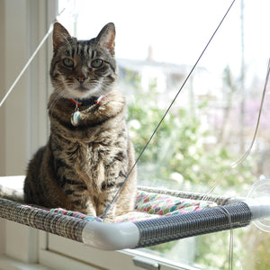 """Kitty Cot"" - Cat Window Perch"