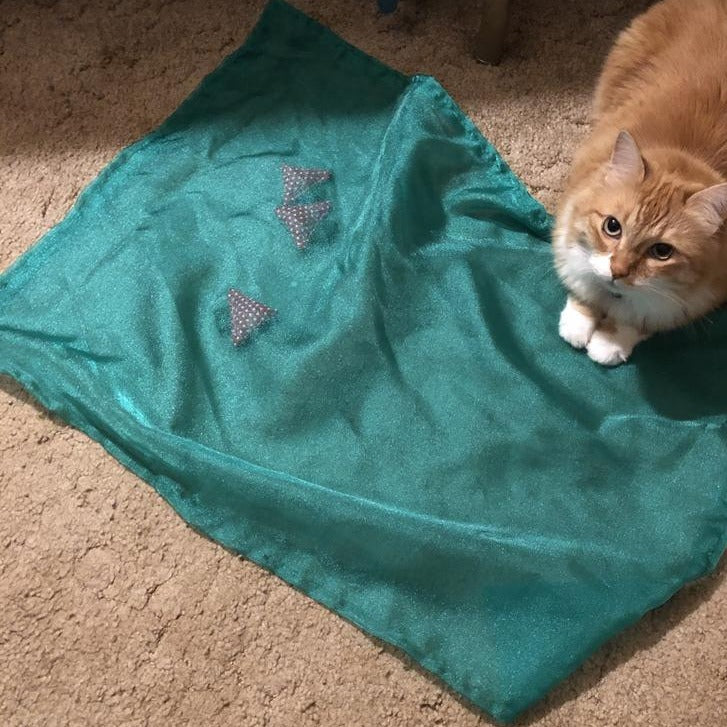 """Strawberry Patch"" - Catnip Play Mat"