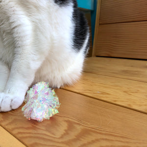Shimmery Crinkle Ball - Cat Toy