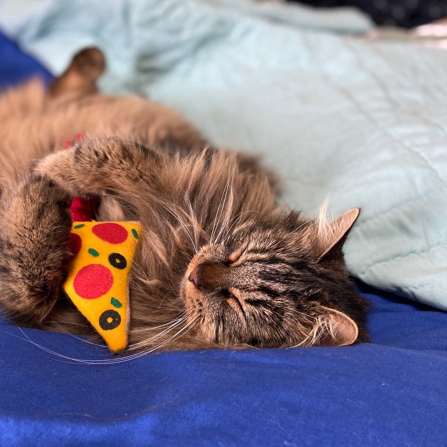 Pizza Catnip Toy (Refillable)