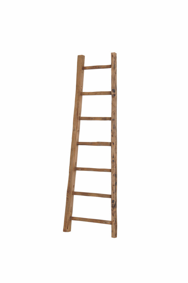 D-Bodhi Small Ladder