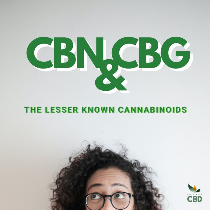 Let's Talk About CBN & CBG