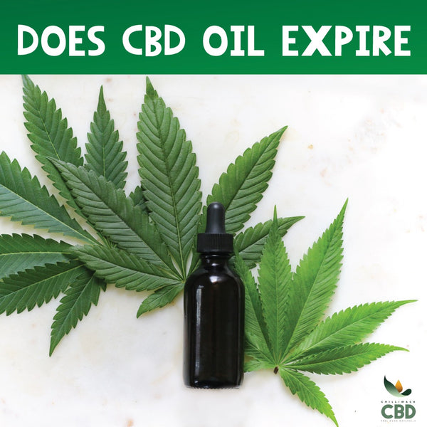 Does CBD oil expire at all? Lets explore that.