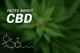 I've heard about CBD but does it actually work?