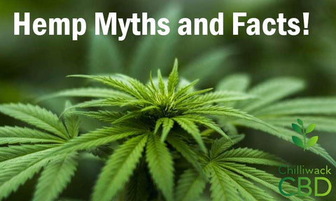 CBD Myths and Facts