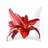 Standard view of Crimson Lily Throw Pillow | Wear the Wonder