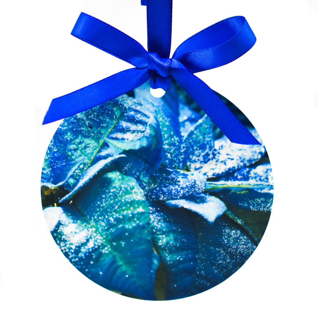 Blue Poinsettia Aluminum Ornament | Wear the Wonder
