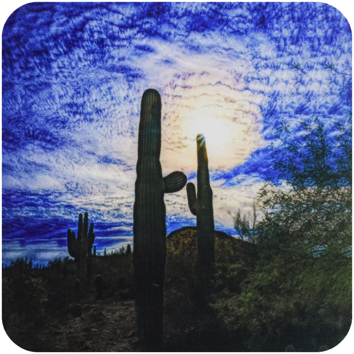 Desert Blues Cactus Coaster - Wear the Wonder