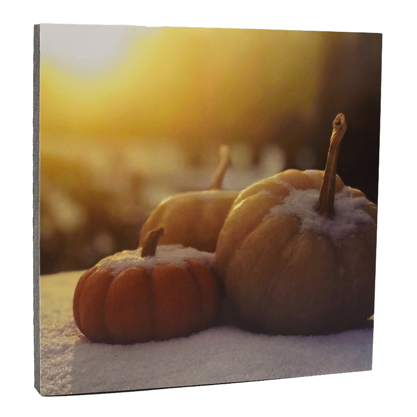 Snowy Pumpkins Art Print - Wear the Wonder