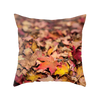 Rusty Zen Decorative Throw Pillow