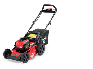 <transcy>SNAPPER LAWNMOWER ESXD19PWM82</transcy>