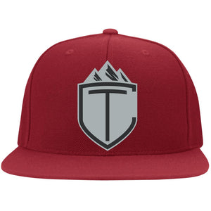 CT embroidered Flat Bill Flexfit Hat