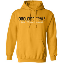 Load image into Gallery viewer, CT Shield: Men's Pullover Hoodie