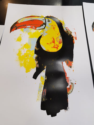 Toucan grey -  artist proof