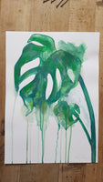 Original A3 Watercolour cheeseplant