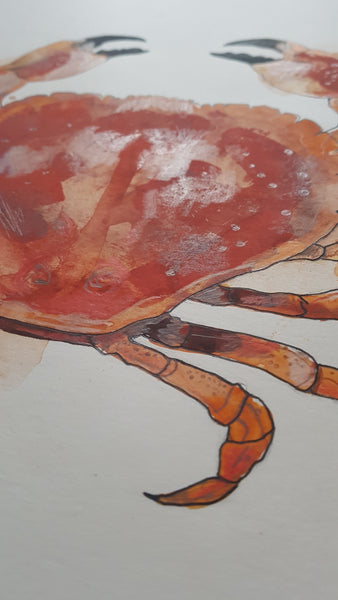 Original A3 Watercolour crab