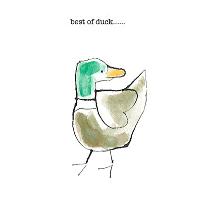 Best of duck