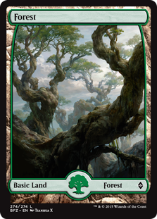 Forest (274) - Full Art