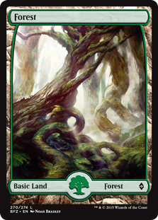 Forest (270) - Full Art