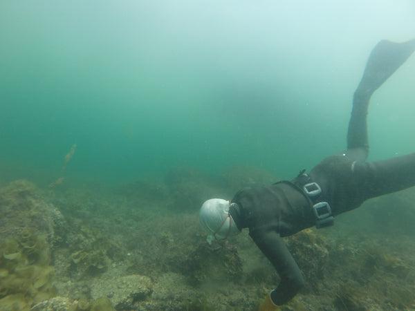 Freediving with the Ama in Japan (by Michelle)