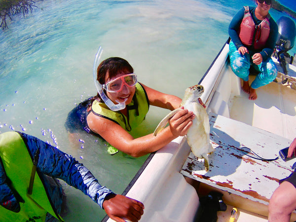 Tracking Sea Turtles in the Bahamas (by Nathania)