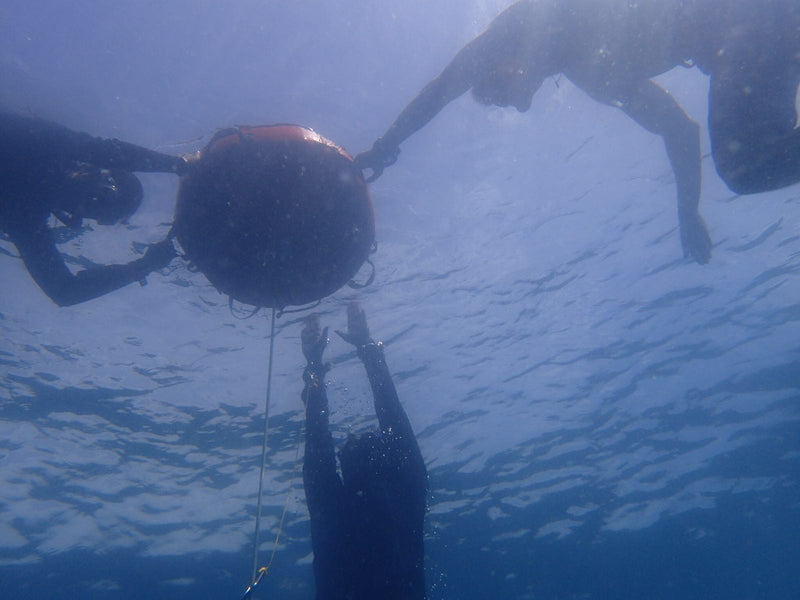 Freediving Open Water Training
