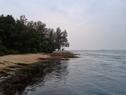Recreational freediving session at Sisters' Island (28 Sept 2019)