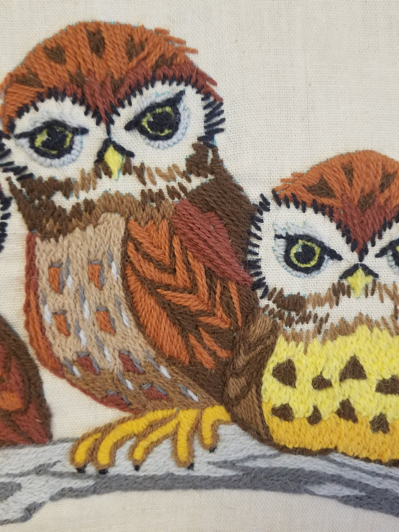 Owls Embroidery